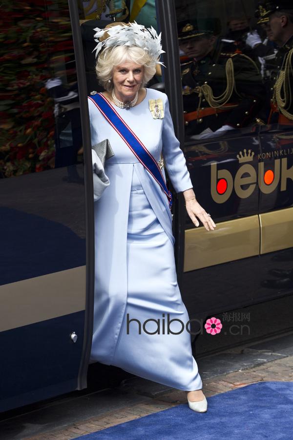 荷兰国王登基视频_各国王妃品味PK 荷兰新国王登基盛会奢华礼服回顾[15]- 中国日报网